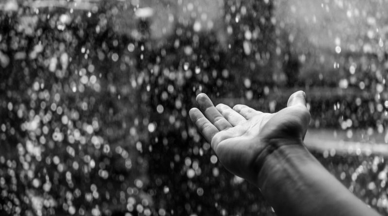 rains 1st of april 2018 palakkad